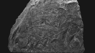 Inscribed slate from Nevern Castle,