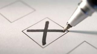 Referendum voter