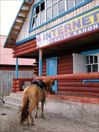 Horse outside internet cafe, Northern Mongolia