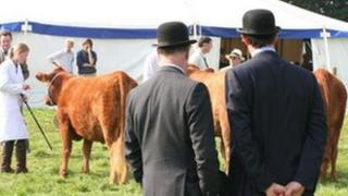 Oxfordshire County and Thame Show in 2008