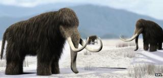 Artistic impression of woolly mammoths