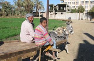 Rural area near Luxor