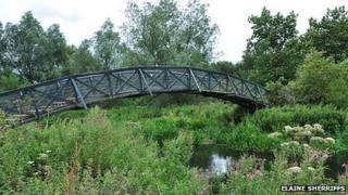 The Mathematical Bridge along the UEA Wildlife Trail