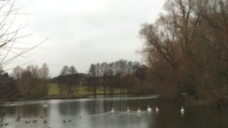 Pond in Holywell, Lincolnshire