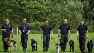 West Midlands Police dogs