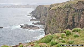 Handa. Pic: Scottish Wildlife Trust