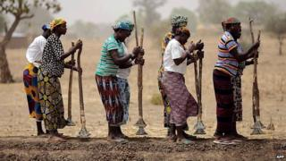 African women in field