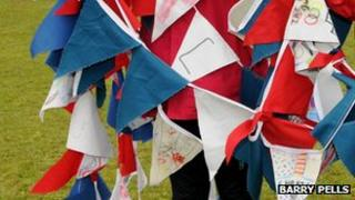 Bunting. Photo: Barry Pells