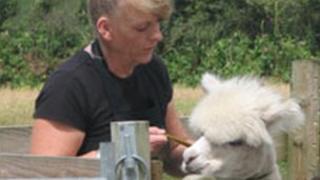 Diane Summers and alpaca