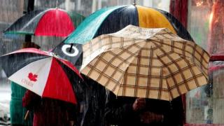Umbrellas in the rain