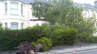 Wilton Street, Plymouth, 16 June 2012