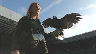 Rufus the hawk, on Centre Court with handler Imogen Davies