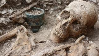 Skeleton found in a Bronze Age and Anglo Saxon burial ground in Wiltshire