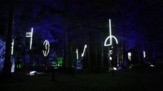 Enchanted forest 2012