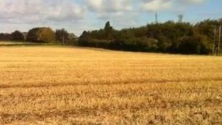 Field near Toton earmarked for housing development
