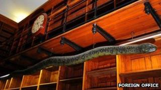Albert the Anaconda