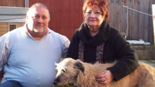Leslie and Jean Avis with Alfred the lurcher