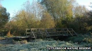 Cuttle Brook bridge