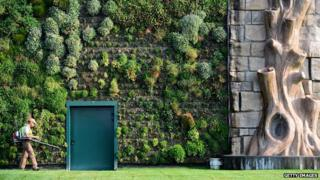 World's biggest vertical garden at Italian shopping mall