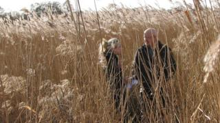 Chris Watson in reed beds