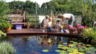 Pond at Alan and Linda Brown's home in Thetford, Norfolk