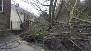 Trees fallen against the vestry of Panteg Chapel in Ystalyfera after the landslip