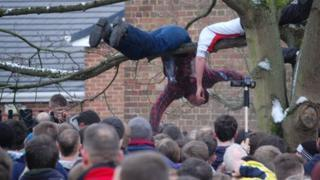 People climb trees to get some of the action