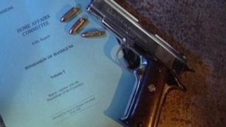A handgun and license