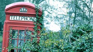 Sad phone box