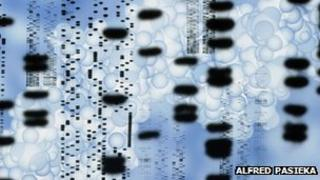 Children are tested for DNA by the police every 10 minutes says the Howard League for Penal Reform