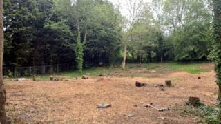 The land in Upper Weston