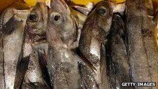 Haddock in Grimsby - file pic
