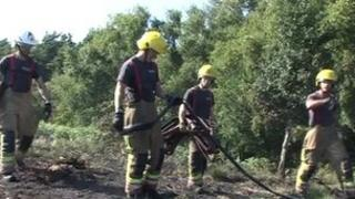 Firefighters tackling Studland heath fire