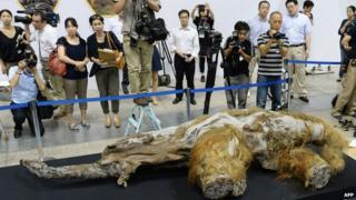 Photographers stand around a mammoth carcass in Yokohama, Japan