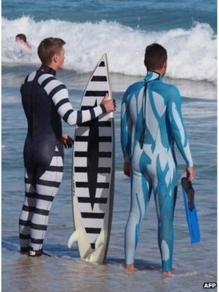 A surfer wearing a black and white striped wetsuit and black and white striped surfboard next to a diver wearing a blue wetsuit