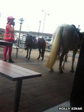 Horses outside McDonald's