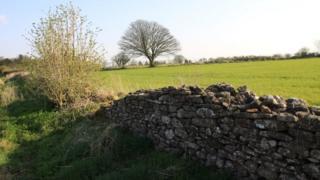 Land on South Stoke plateau