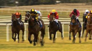 Horse race at Scone Race Track in Hunter Valley