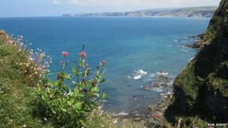 Cartway Cove, Cornwall
