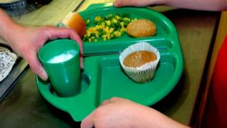 Child holding school lunch tray