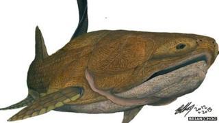 Entelognathus primordialis