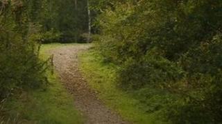 Nutbrook Trail