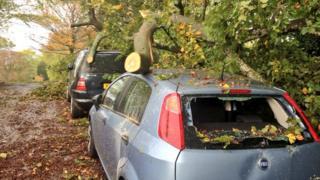 Tree down on cars at Marlborough Buildings, Bath