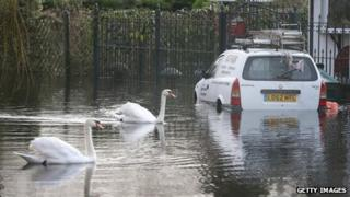 Two swans swim past a van in floodwater