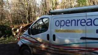 BT van in Bedham on Friday