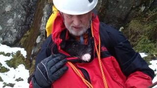 Mountain rescuer with dog