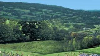 Blackdown Hills