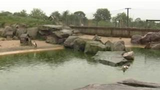 Blackbrook Zoological Park