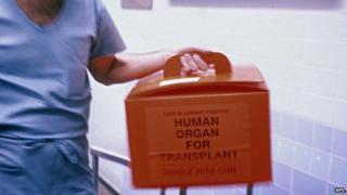 Donor organ for transplant