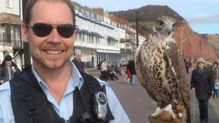 Jonathan Marshall and one of his falcons